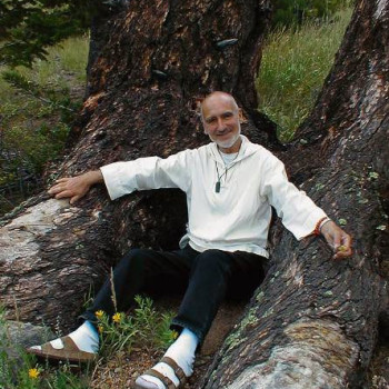 Br. David Steindl-Rast tree