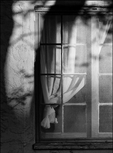Shadows, window, light