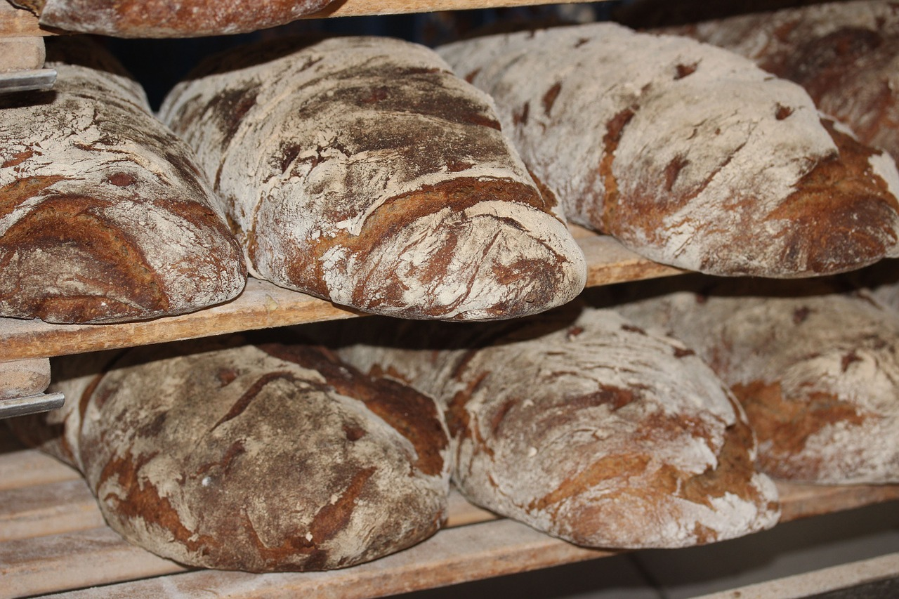 Loaves and Fishes – a poem