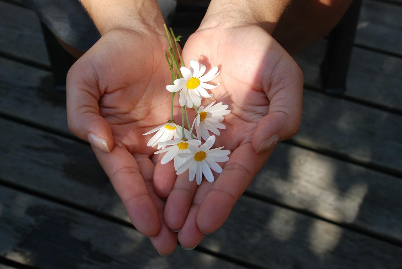 Gratefulness and Generosity
