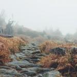 Faith and the Path