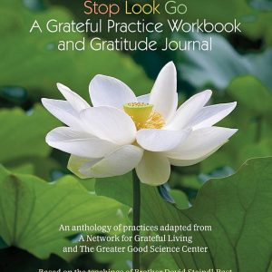 Stop Look Go: A Grateful Practice Workbook and Gratitude Journal