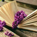 Books Related to Aging Gratefully