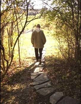 path, walking, Br. David