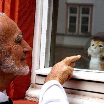 Br. David talking to cat in a window