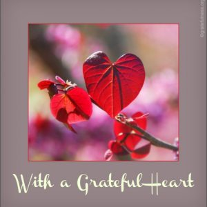A red leaf in the shape of a heart.
