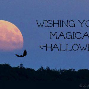 moon bat Halloween