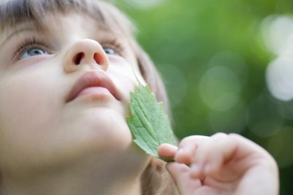 girl awe leaf