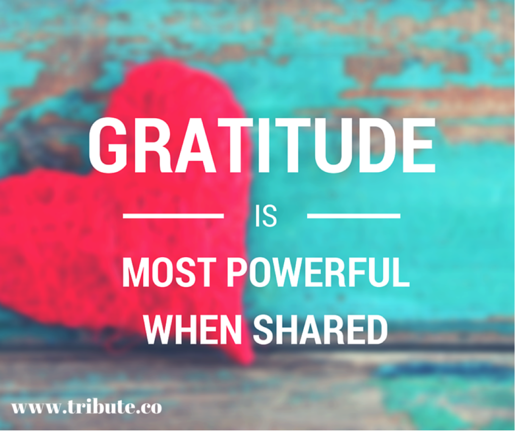 Gratitude-Shared-1024x858.png