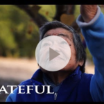 Grateful: A Love Song to the World