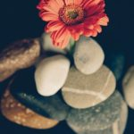 Gratitude to Self