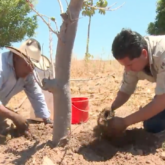 drought, solid rain, Mexico, farmers