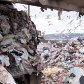 piles of garbage by landfill