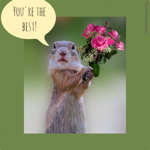 Squirrel holding a bouquet of flowers