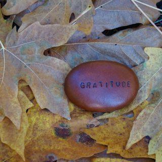 Grateful Changemakers: The Nature of Gratitude